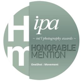 IPA HM 2020 - One Shot Movement
