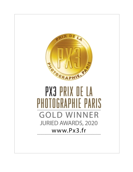 PX3-2020-Gold
